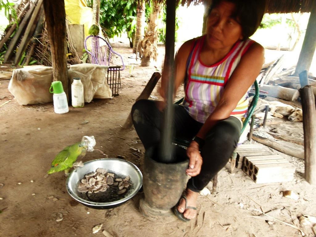 Mulher mebengokré moendo sementes