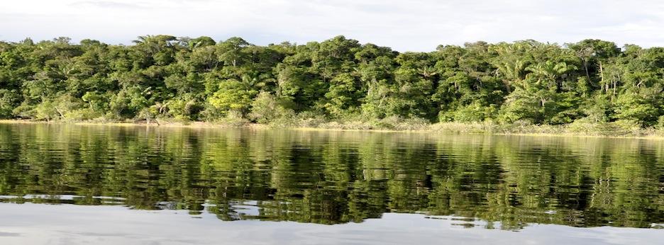 Blog da Amazônia