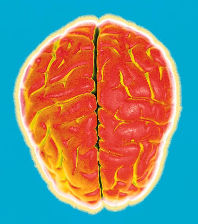Causes sudden onset tinnitus